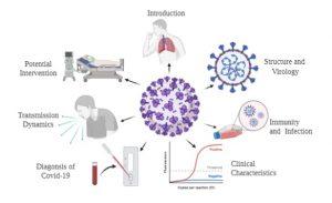 Coronovirus-disease-COVID19